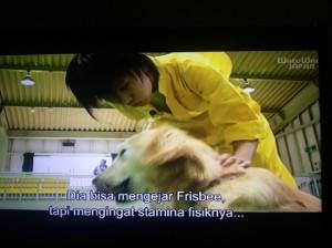 Personil AKB48 Melatih Anjing Untuk Pertunjukan (Capture foto: Syaifuddin)