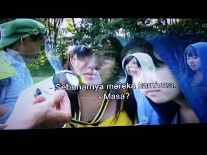 AKB48 Finding Insect (screenshoot by Syaifuddin)